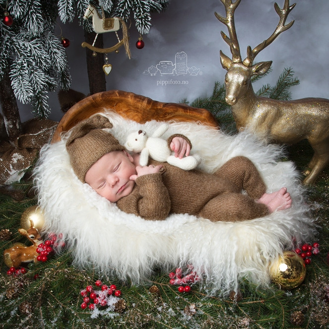 nyfødtfotografering, babyfotografering, nyfødt baby, nyfødtgutt