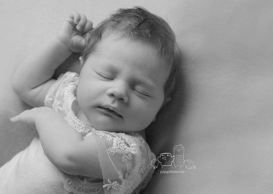 nyfødtfotografering Oppegård