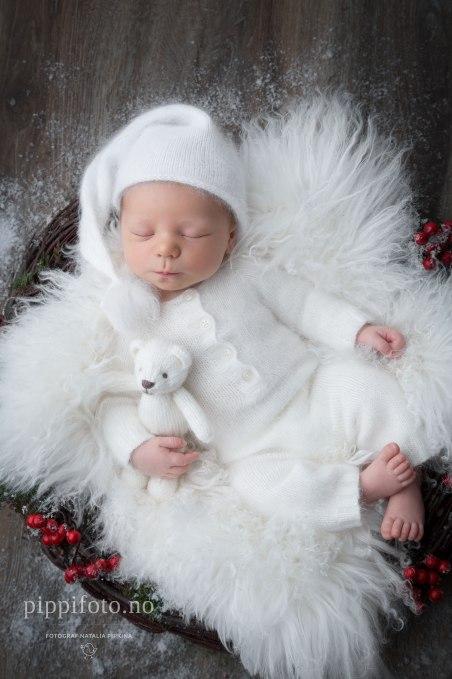 nyfødtfotograf-nyfødtfotografering-oslo