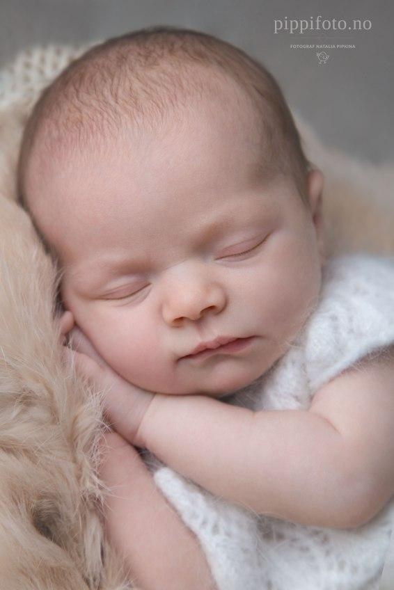 nyfødtbilder-nyfødtfotografering-nyfødtbaby-nyfødtfotograf-babyfotografering